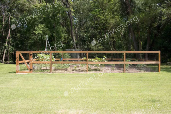Gated Rustic Fence